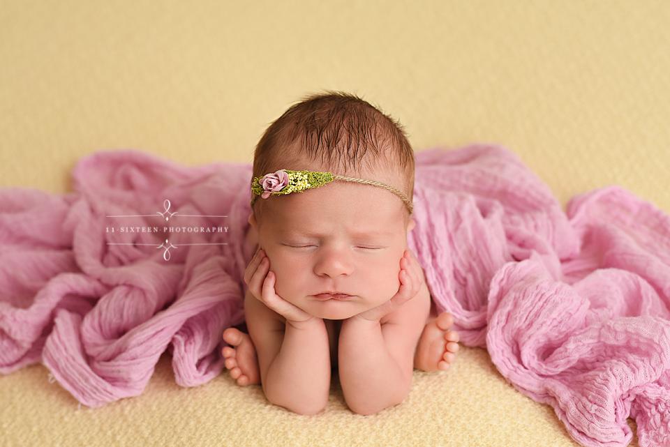 11 sixteen photography richmond virginias premier newborn and baby photographer newbornphotographers com