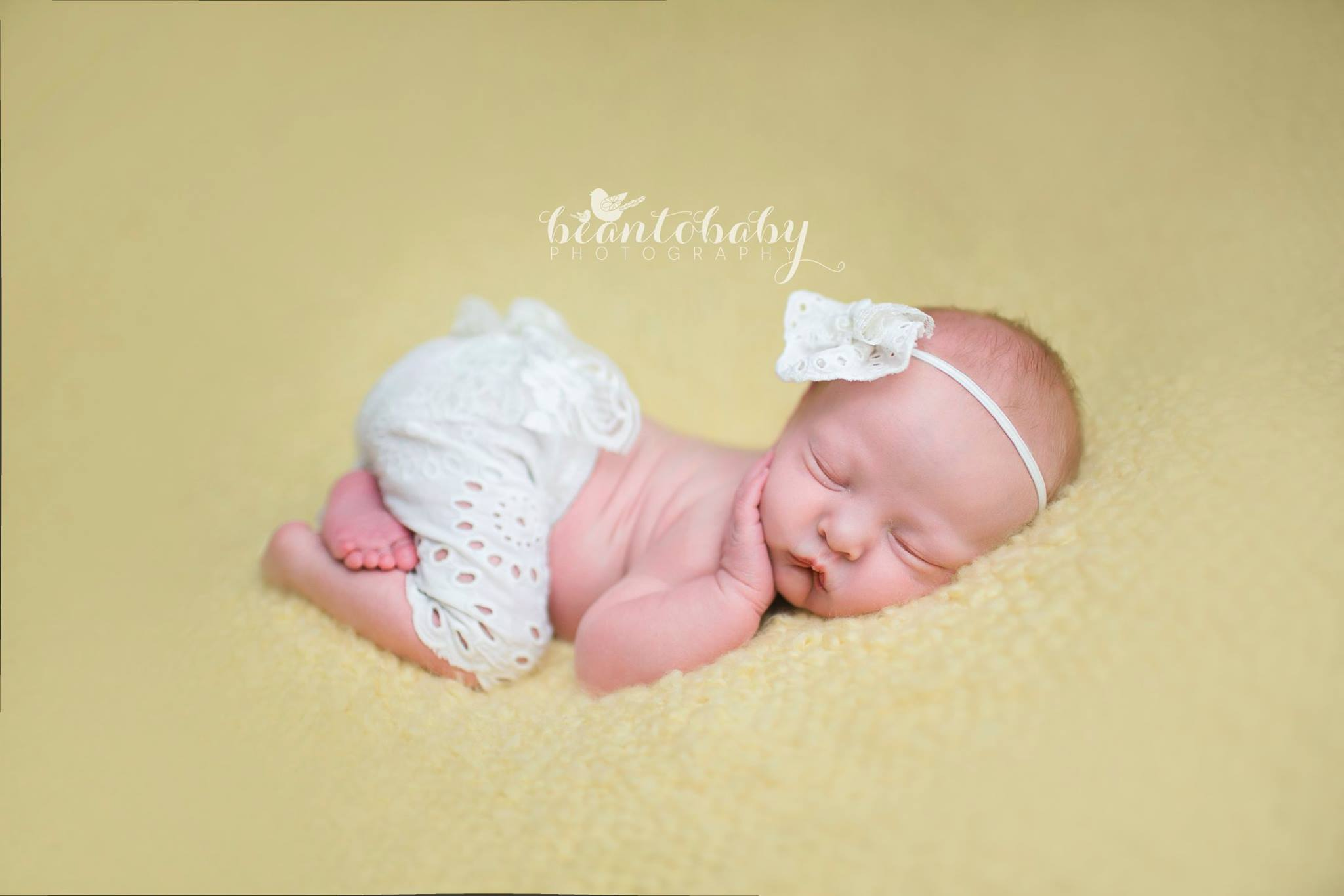 Bean-to-Baby-ashley-hempel-photography