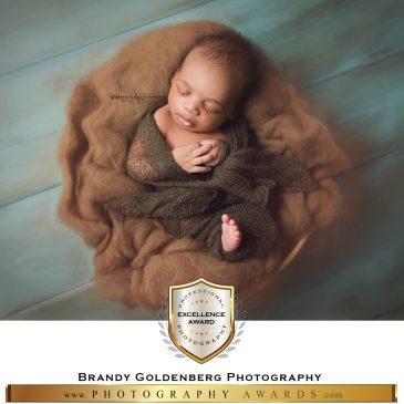 Brandy-Goldenberg-Photography