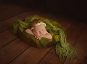 Cheryl Spaulding Photography.jpg