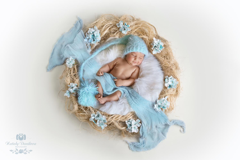 FU4A9499-bleu-nest