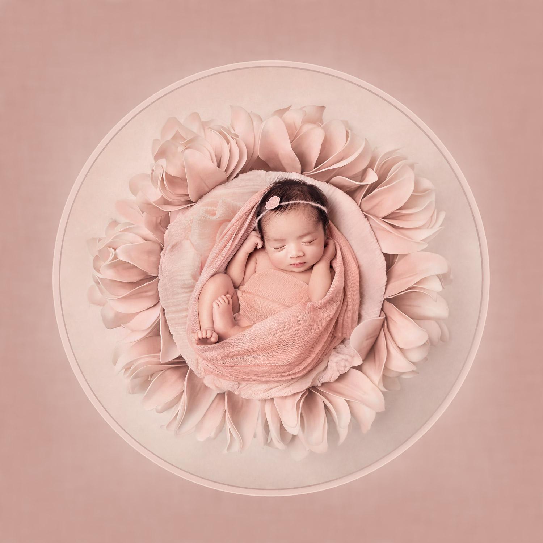 Sarasota-newborn-fine-art