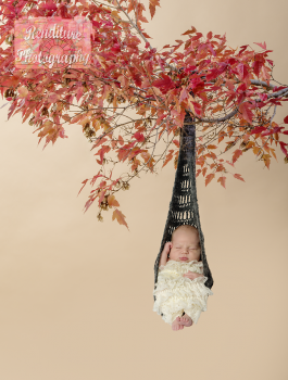 Saskatoon-Newborn-Family-Renditure-Baby-Photography-Photographer-Maternity-Pregnancy-Saskatchewan-105mFBR.png