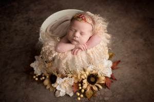 fall-newborn.png