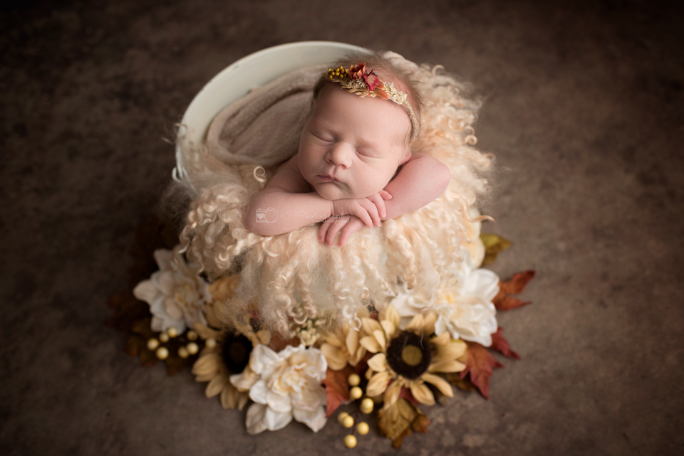 fall-newborn