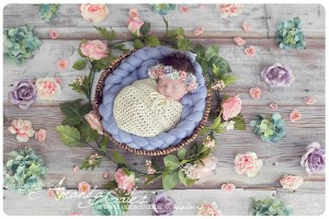 lila-flowers.jpg