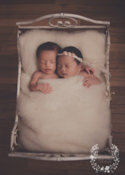 montreal-photographer-baby-pictures-photos-twins01.png