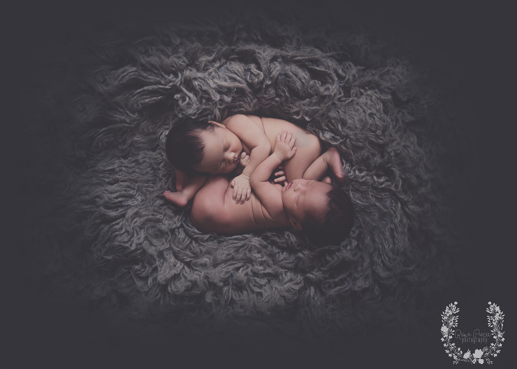 montreal-photographer-baby-pictures-photos-twins071