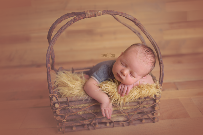 newborn-photographer-yelp-san-diego