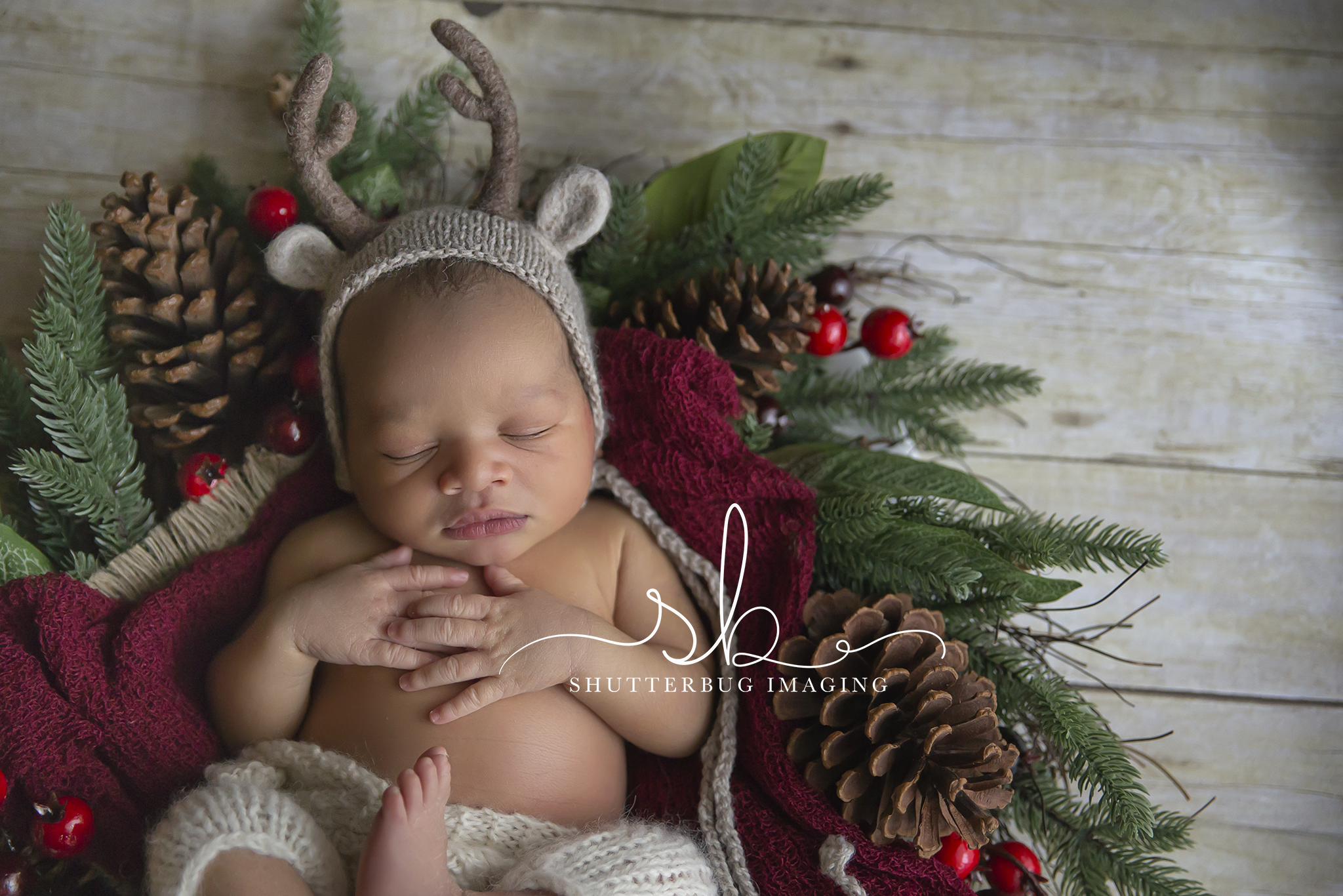 newborn-photography-durham-region-clarington-shutterbug-imaging-baby