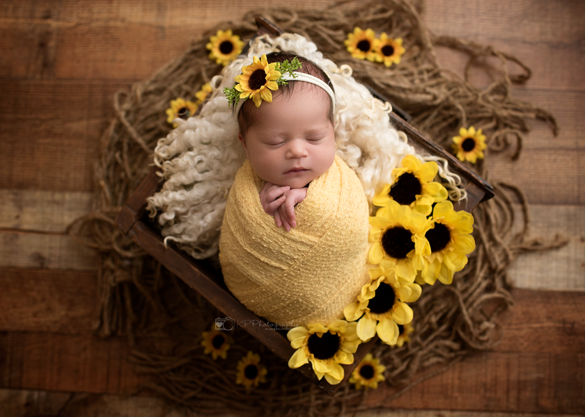 sunflower-newborn-pictures