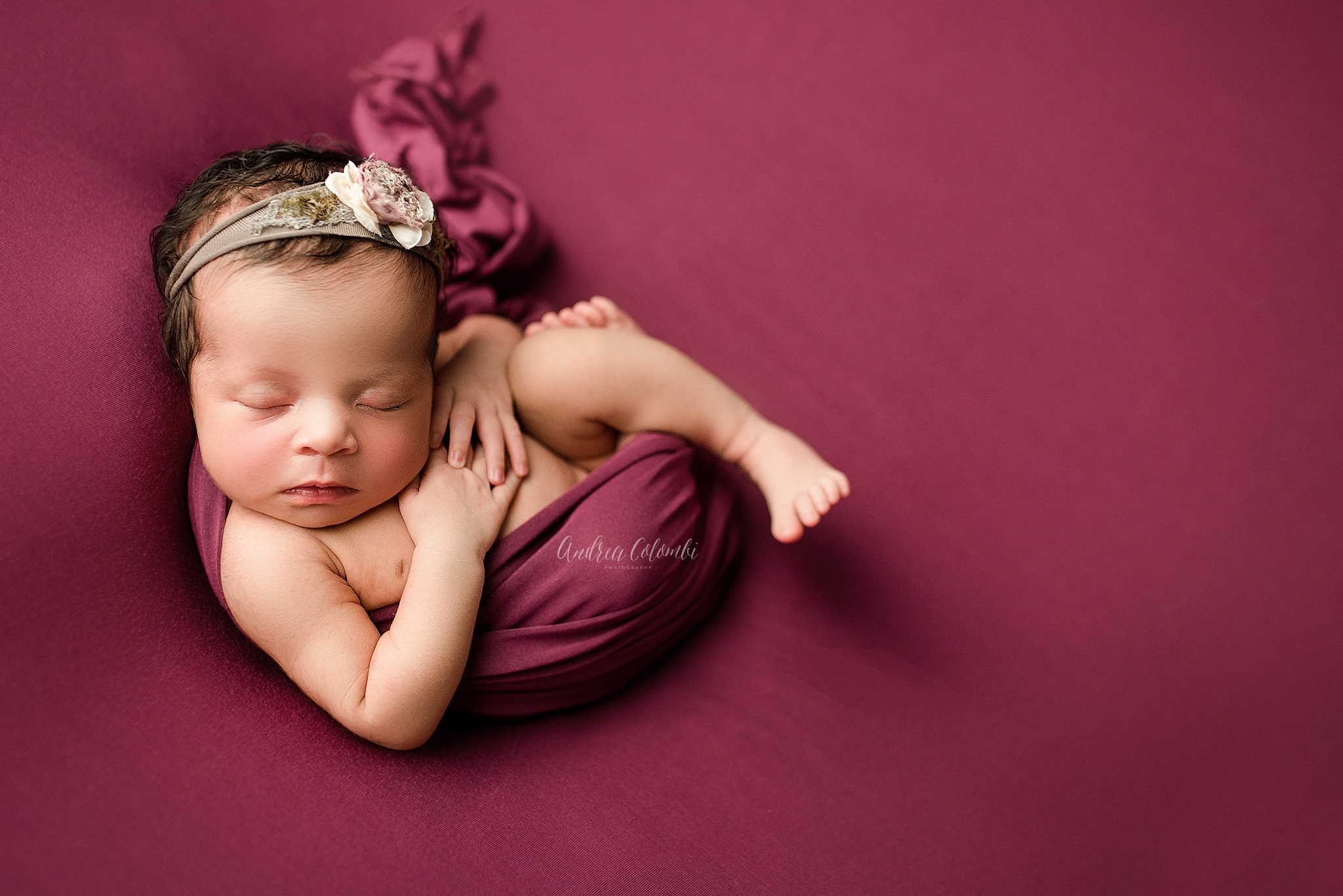 Andrea colombi photography south florida newborn photographer